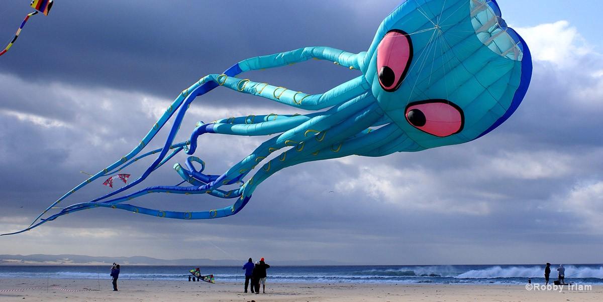 sigpics-kite