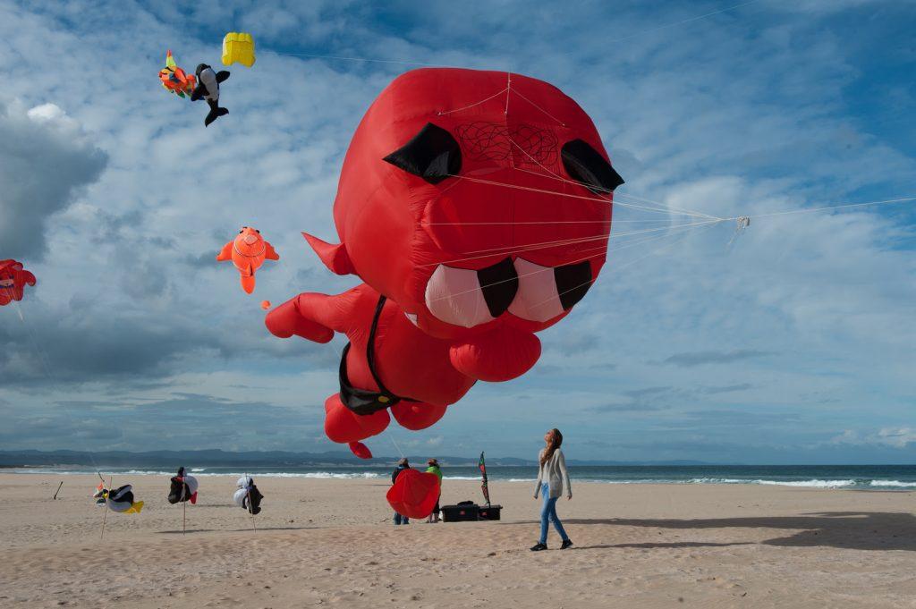 Kites big and small © Kody McGregor
