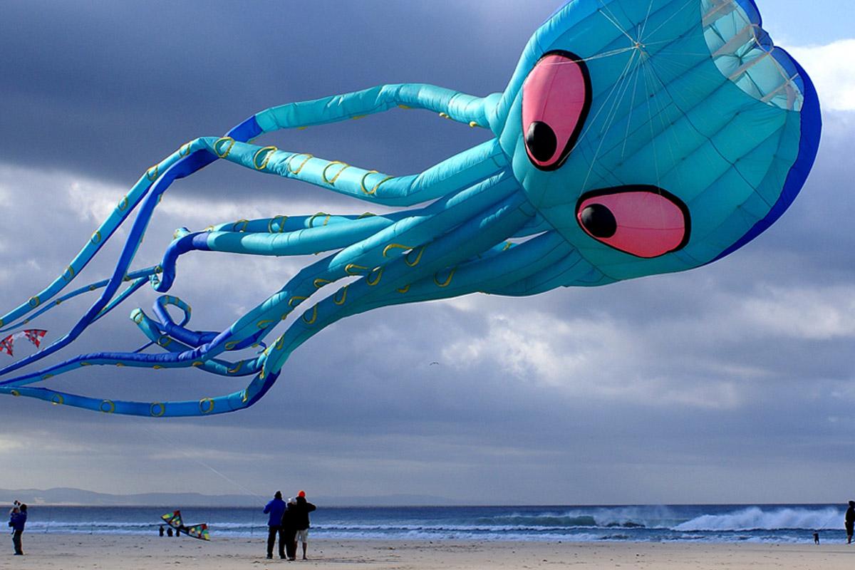 J-Bay Kite Festival