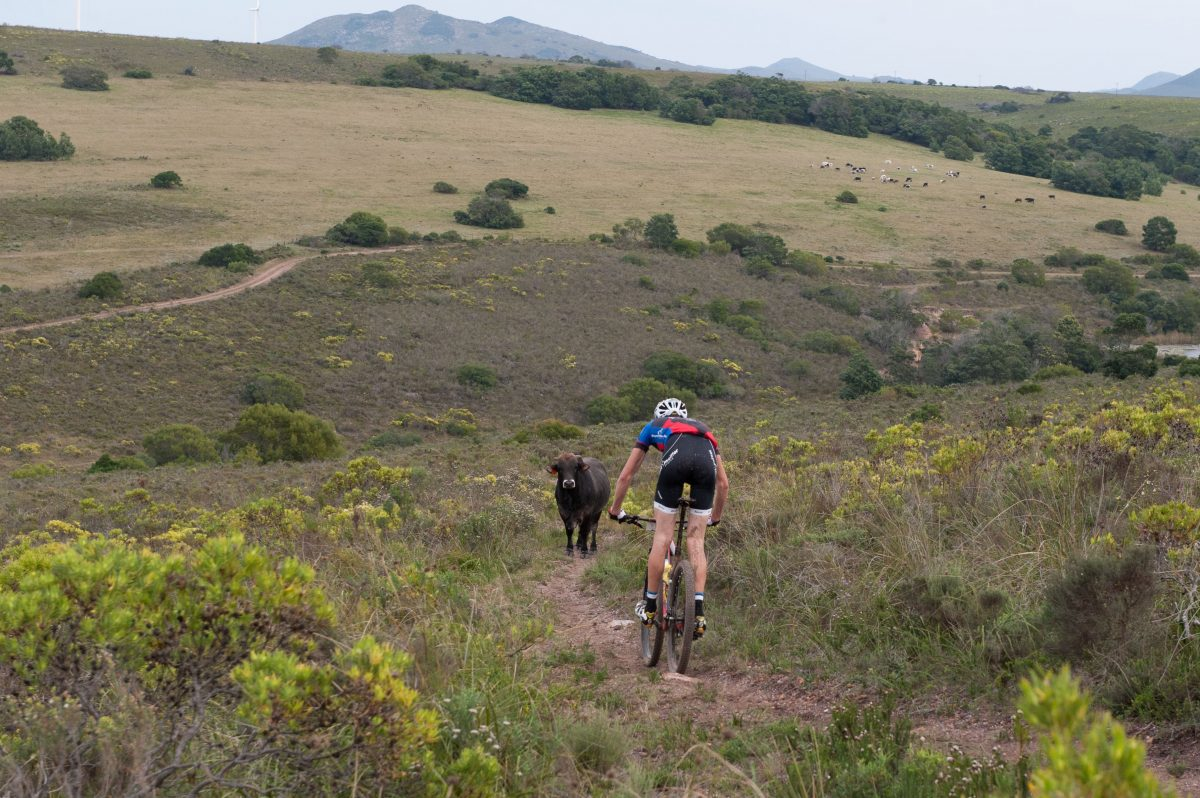 5 REASONS TO ENTER THE JBAY WIND FARM MTB CLASSIC